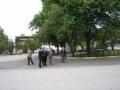 2006_06_torokorszag (93)